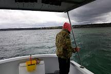 Tory M Fishing Charters, American River, Australia