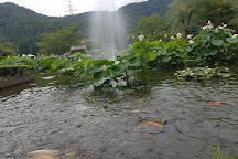 Hanahasu Park, Minamiechizen-cho, Japan
