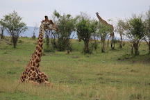 Africa Flash McTours and Travel, Nairobi, Kenya