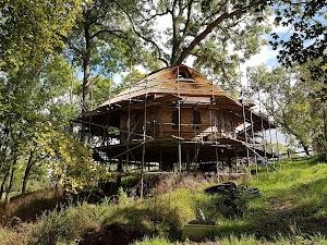 Treeopia - Tree House Holidays