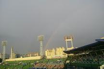 Daegu Baseball Stadium, Daegu, South Korea