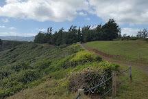 Na Aina Kai Botanical Gardens, Kilauea, United States
