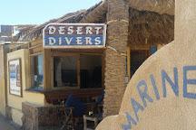 Desert Divers Dahab, Dahab, Egypt
