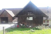 Wildegg Castle, Wildegg, Switzerland