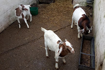 Windmill Hill City Farm, Bristol, United Kingdom
