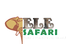 EleSafari, Amer, India