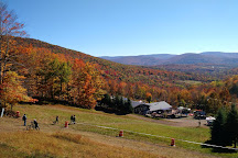 Plattekill Mountain, Roxbury, United States