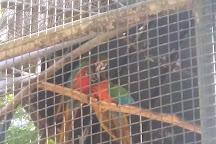 Zoo Bosque Guarani, Foz do Iguacu, Brazil