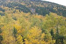 Grafton Notch State Park, Bethel, United States
