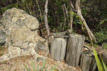 Queen Elizabeth II Botanic Park, Grand Cayman, Cayman Islands