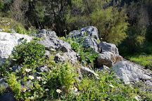Skotino Cave, Heraklion, Greece