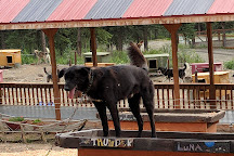 Husky Homestead, Denali National Park and Preserve, United States