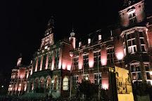 University of Groningen, Groningen, The Netherlands