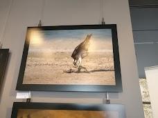 Cartoon Art Gallery dubai UAE