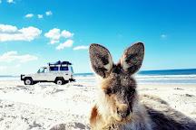 G'day Adventure Tours, Bribie Island, Australia