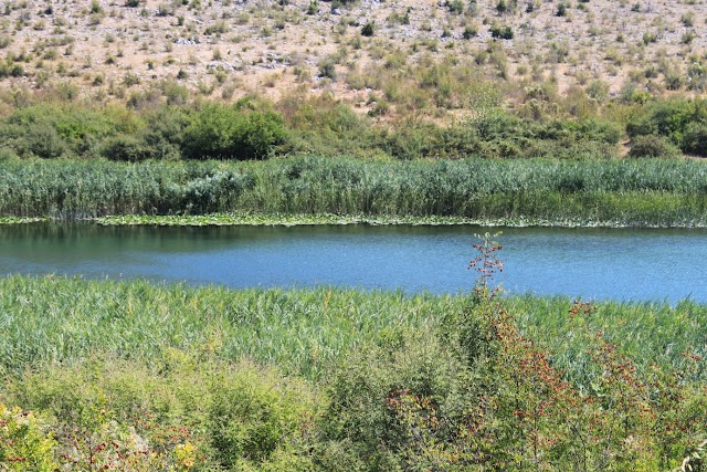 Park prirode Hutovo Blato