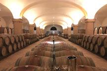 Castiglion del Bosco Winery, Montalcino, Italy