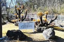 Gifu Prefectural Museum, Seki, Japan