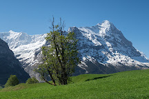 The Eiger Trail, Grindelwald, Switzerland