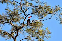 Salto Bernabe Mendez, Iguazu National Park, Argentina