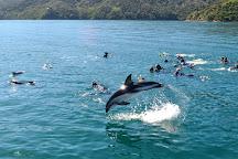 E-Ko Tours, Picton, New Zealand