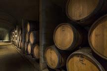 Wente Vineyards & Vineyard Tasting Room, Livermore, United States