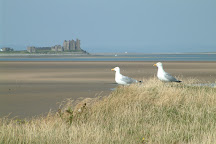 South Walney Nature Reserve, Barrow-in-Furness, United Kingdom