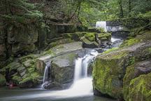 Healey Dell Nature Reserve, Rochdale, United Kingdom