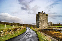 Rockfleet / Carraigahowley Castle, Newport, Ireland