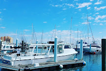 Right Hook Fishing Charters, Riviera Beach, United States