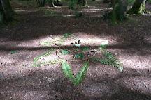 Dooney Rock Forest Park, Sligo, Ireland