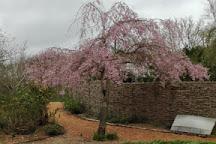 Fuller's Mill Garden, West Stow, United Kingdom