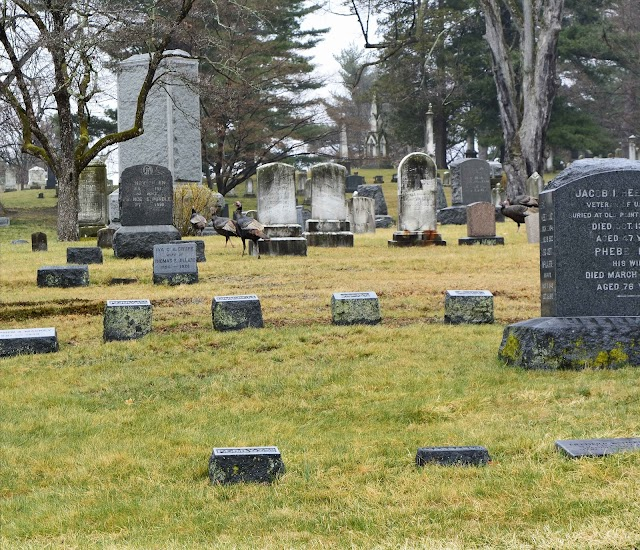 Poughkeepsie rural cemetery