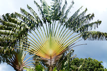 Jardin Botanique de Deshaies, Deshaies, Guadeloupe