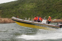 Knysna RIB Adventures, Knysna, South Africa