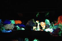 Electric Ladyland Fluorescent Art Museummla, Amsterdam, The Netherlands