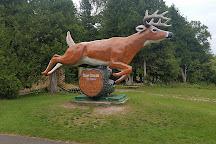 Deer Ranch, Saint Ignace, United States