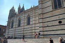 Complesso Museale Santa Maria della Scala, Siena, Italy