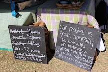 SAGE Farmers Market, Moruya, Australia