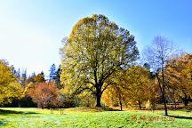 John A. Finch Arboretum, Spokane, United States