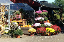 Farmer Joe's Gardens, Wallingford, United States