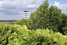 John Paul II Garden, Inwald, Poland