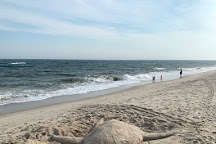 Pike's Beach, Westhampton Beach, United States