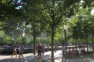 World Trade Center's Liberty Park