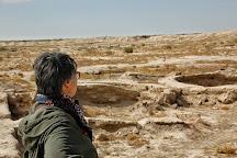 Gonur Depe, Mary, Turkmenistan