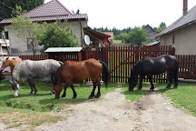 Apuseni Natural Park, Northwest Romania, Romania