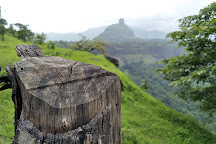 Kothaligad (Peth) Fort, Karjat, India
