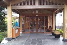 Aqua Resort Irumanoyu, Iruma, Japan