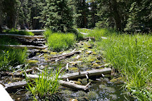 Great Basin National Park, Baker, United States