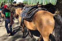 Waipi'o on Horseback, Honokaa, United States